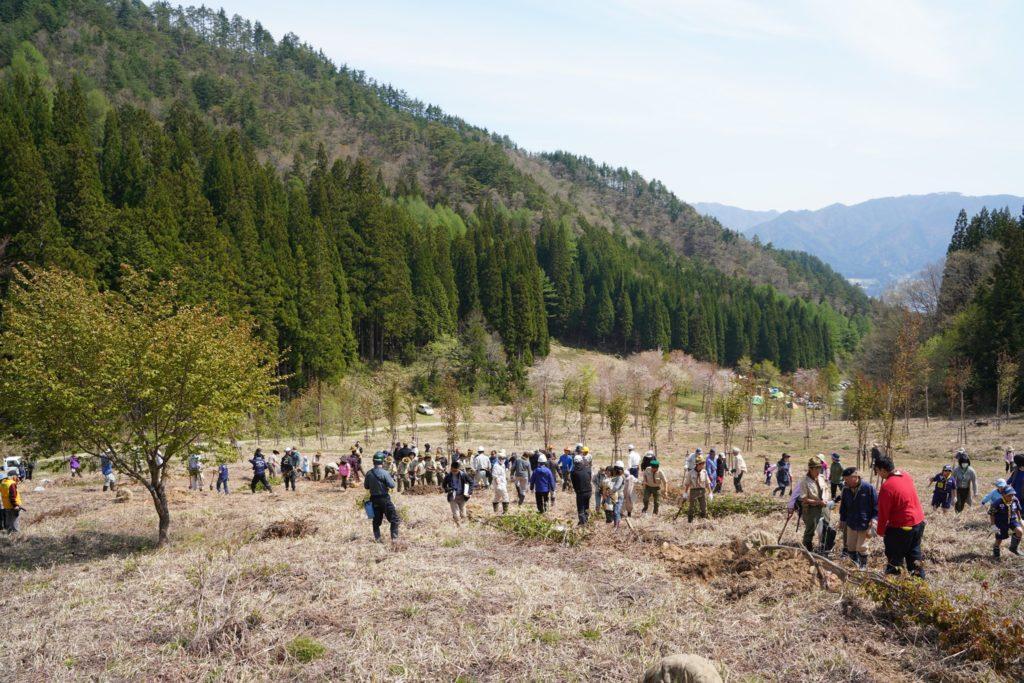 高野千本桜公園プロジェクトを盛り上げたい!メンバー募集!