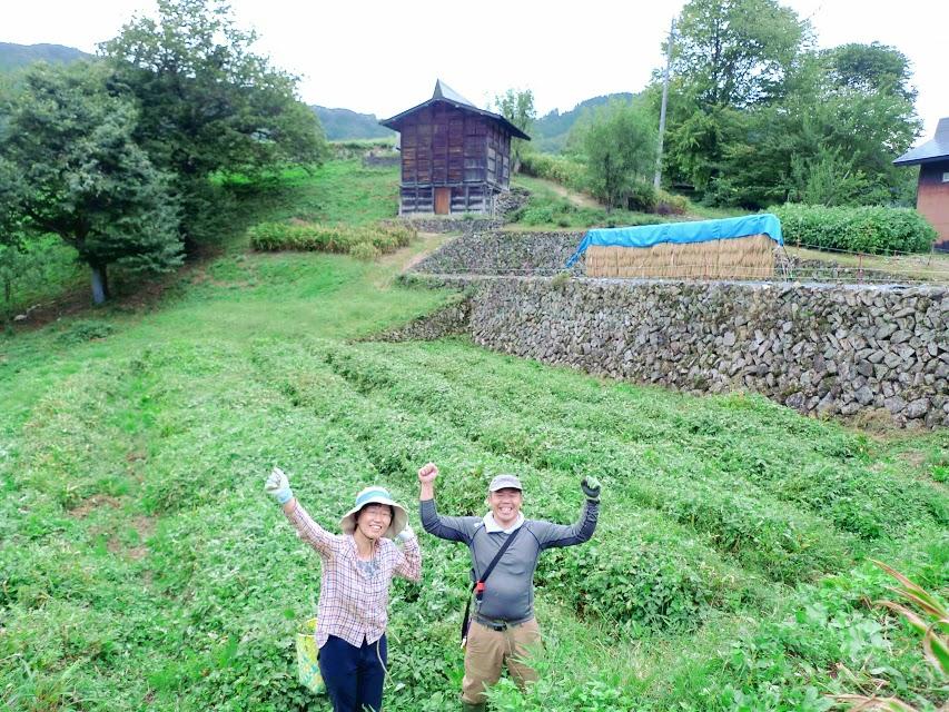 【7月11日開催】種蔵の景観を維持しよう!〜石積みの草取り編①!