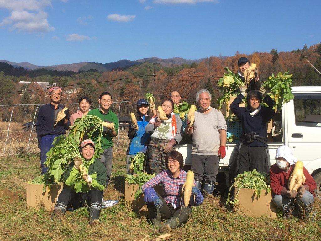 天空の里「山之村」!清水さん家での大根収穫のお手伝い!