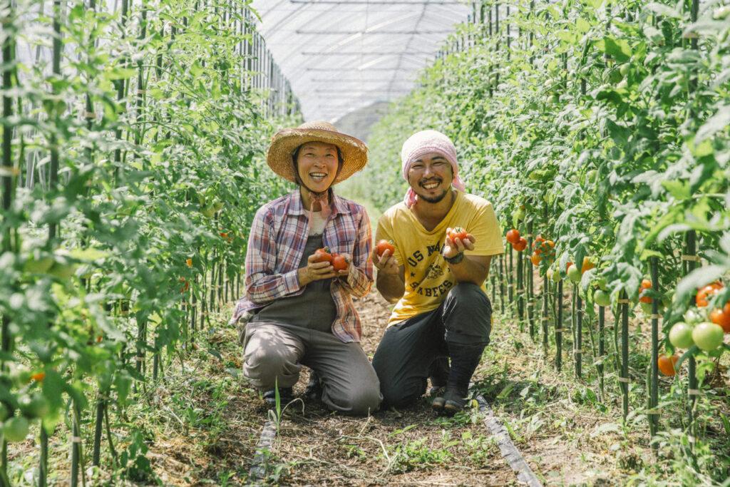 井関農園『飛騨市河合町でトマト農家はじめました』ハウス建てのお手伝いをしよう!