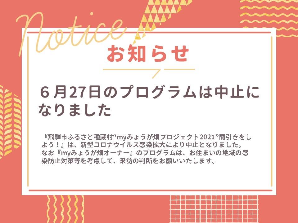 """【6月27日】『飛騨市ふるさと種蔵村""""myみょうが畑プロジェクト2021""""間引きをしよう!』は中止になりました"""
