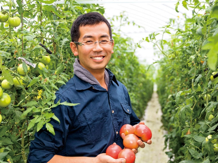【募集開始】池田農園でのおてつたび!飛騨古川でミニトマトの収穫のお手伝い!